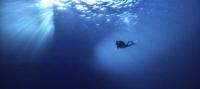 Arona Son Atlántico arranca su sexta edición poniendo el foco en el futuro incierto de los océanos
