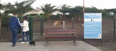 La nueva Ordenanza de Animales de Guía establece multas de hasta 15.000 euros para las infracciones muy graves