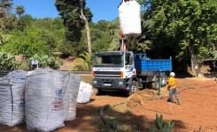 El Cabildo abre 1,6 millones en ayudas para la papa, recuperar tierras de cultivo, apoyar al cochino negro y a pequeños productores
