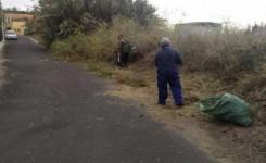 El consistorio ramblero solicita la colaboración para mejorar limpieza y seguridad en pistas agrícolas