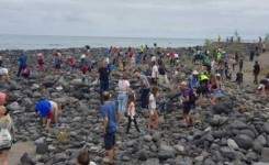 Puerto de la Cruz actúa contra la moda de los apilamientos de piedras por sus perjuicios al medio