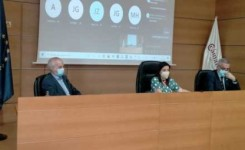 Yaiza Castilla propone liderar desde Canarias una política turística común para las islas europeas