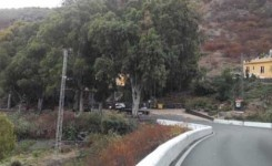 El desmonte de laderas en el Toscón Alto obliga al cierre de la carretera de Teror también los fines de semana