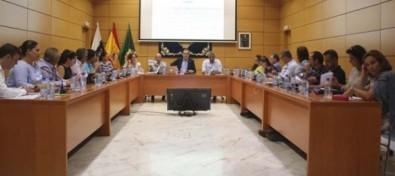 El Pleno del Cabildo solicita la suspensión de los trabajos de construcción de la Línea de Alta Tensión Macher-Matas Blancas
