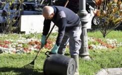 El Ayuntamiento capitalino trabaja en la reposición de jardines tras la celebración del Carnaval