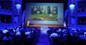 El proyecto B-CHARMED muestra la magia de los bosques submarinos de coral negro de Lanzarote en el prestigioso festival International Ocean Film Tour