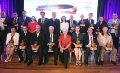 Entregados en ARICO los premios Gánigo 2019 del CIT Sur