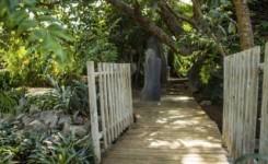 El Ayuntamiento de Santa Cruz estrena nueva Ruta Etnobotánica en el Palmetum