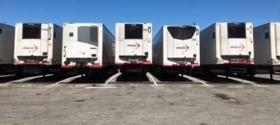 Naviera Armas Trasmediterránea garantiza el mejor tratamiento al plátano de Canarias en el puerto de Cádiz