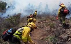 Canarias recibirá 300.000 euros para paliar los daños del incendio de Arico