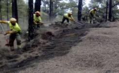 El Cabildo de El Hierro contrata el apoyo a la campaña contra incendios forestales (2020-2023) a TRAGSA por 2,1 millones