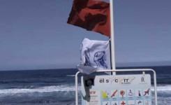 Los Realejos cierra al baño la Playa del Socorro por presencia de medusas y mal estado de la mar