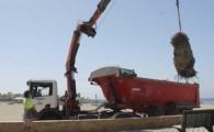 El Ayuntamiento retira las palmeras muertas en el paseo marítimo de El Castillo