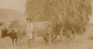 Un libro resucita la historia del camposanto de San Juan (1814-1983)