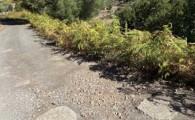Valleseco acometerá la repavimentación de la vía El Prado