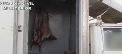 La Guardia Civil inmoviliza en Fuerteventura carne para consumo humano por incumplir la normativa sobre seguridad animal