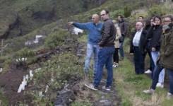 La Universidad de La Laguna elabora un análisis sobre el agroturismo en Canarias