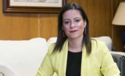 Comercio de Canarias saca a licitación 600.000 euros para la dinamización de Zonas Comerciales Abiertas