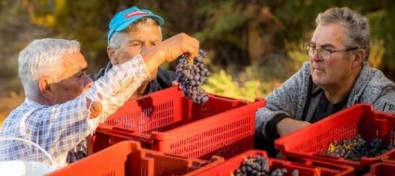 La Palma revaloriza la autenticidad de los productos locales