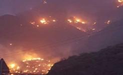 Gran Canaria se enfrenta al riesgo de un gran incendio forestal, hay que evitar todo elemento de ignición