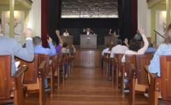 El pleno aprueba la cesión al Gobierno de Canarias de 22 parcelas en El Roque para la construcción de viviendas públicas