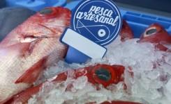 El Cabildo concede ayudas a nueve cofradías de pescadores por valor de 70.000 euros