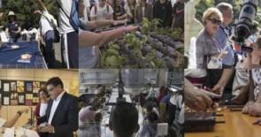 Las Semanas de la Ciencia y la Innovación 2017 abren la inscripción para centros educativos de Canarias