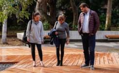 El Ayuntamiento de Santa Cruz de Tenerife rehabilita los senderos de madera del Parque García Sanabria